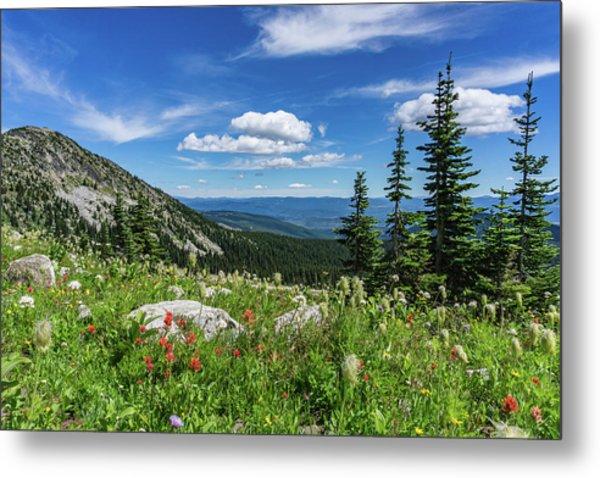 Summer Wildflowers On Big White Metal Print