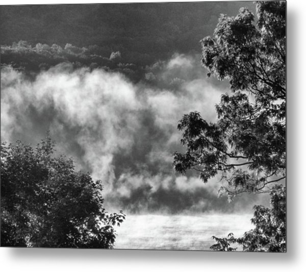 Summer's Leaving Metal Print