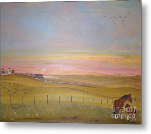 Summer's Prairie Sunset Metal Print