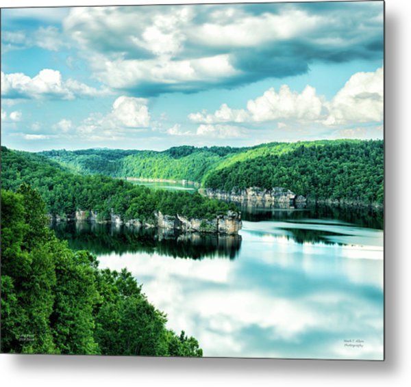 Summertime At Long Point Metal Print