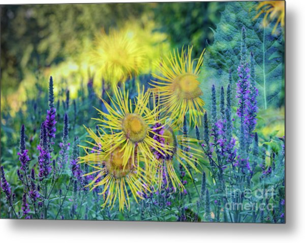 Summertime Metal Print