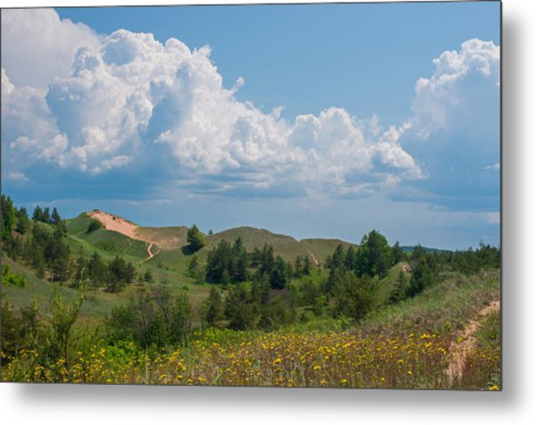 Summertime In The Grand Sable Dunes Metal Print