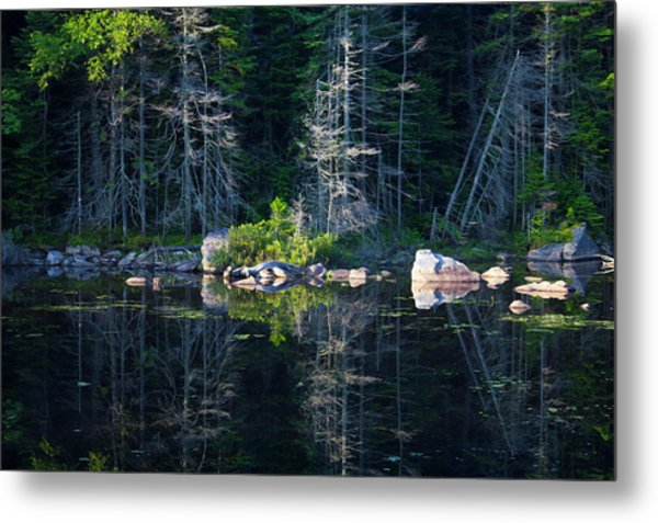 Metal Print featuring the photograph Summertime Reflections On The Lake by Jessica Tabora