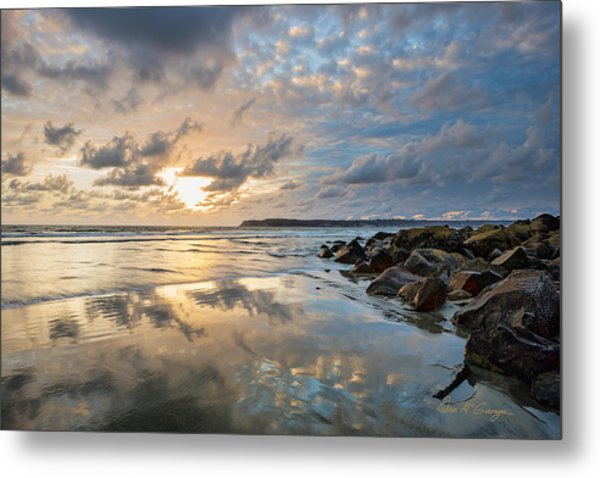 Sun Drenched Metal Print