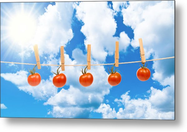 Sun Dried Tomatoes Metal Print
