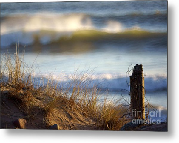 Sun Kissed Waves Metal Print