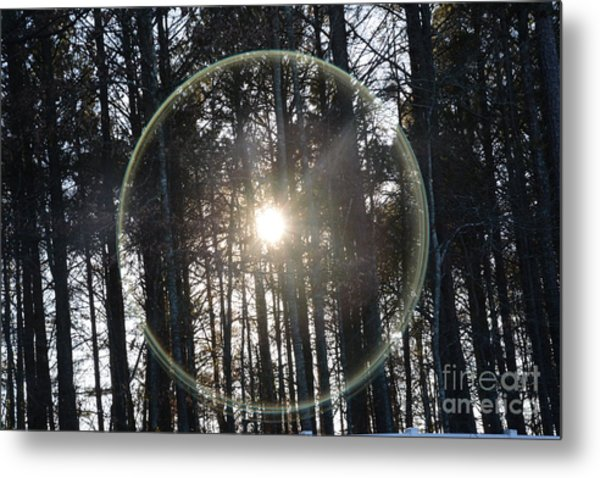 Sun Or Lens Flare In Between The Woods -georgia Metal Print