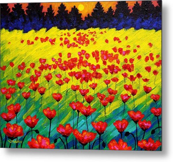 Sun Poppies Metal Print by John  Nolan