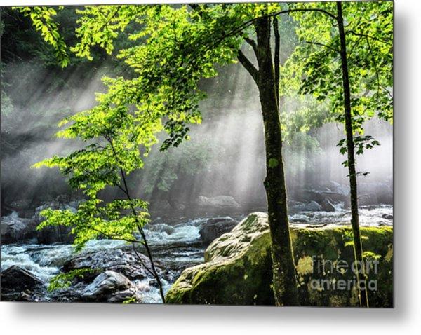 Sun Rays On Williams River  Metal Print