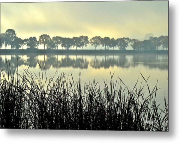 Fog At Sunrise Metal Print