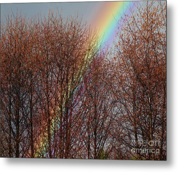 Metal Print featuring the photograph Sunday's Rainbow by Laura  Wong-Rose