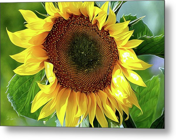 Sunflower 10...06.10 Yellow Symbolised Happiness Metal Print