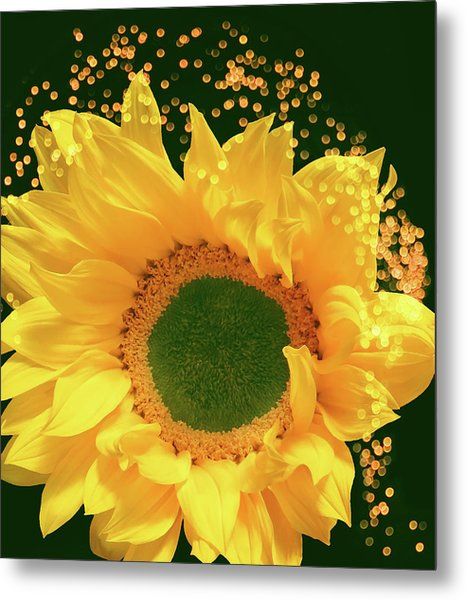 Sunflower Art Metal Print