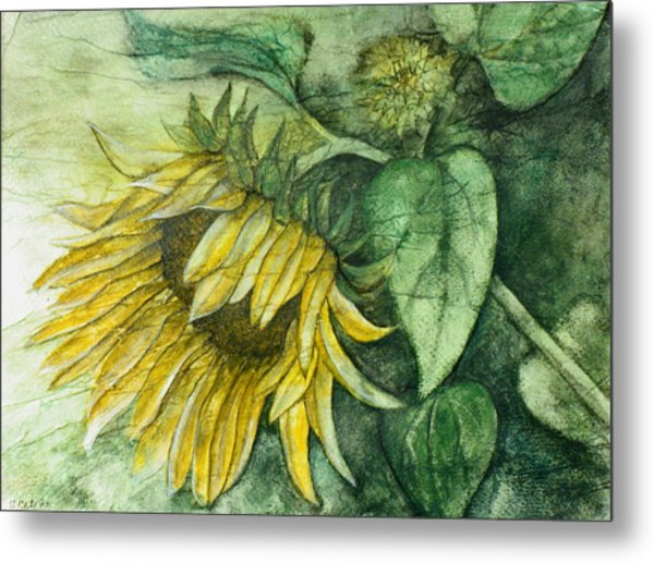 Sunflower At Dusk Metal Print by Sandy Clift