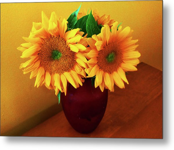 Sunflower Corner Metal Print