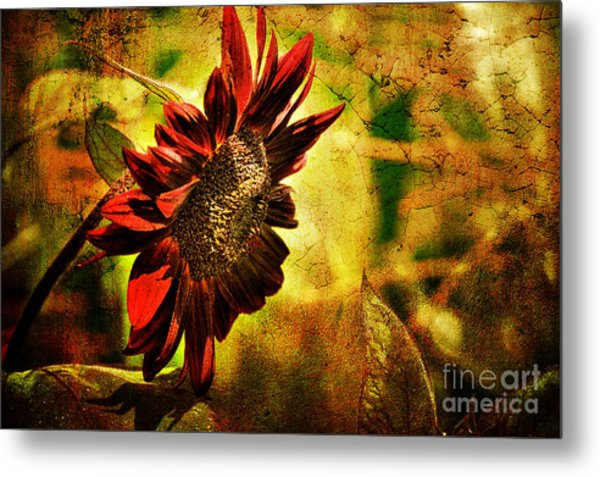 Metal Print featuring the photograph Sunflower by Lois Bryan