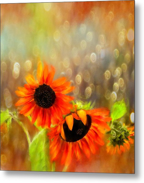 Sunflower Rain Metal Print