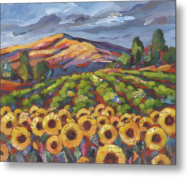 Sunflower Ranch Metal Print