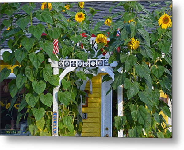 Sunflower Roads Metal Print