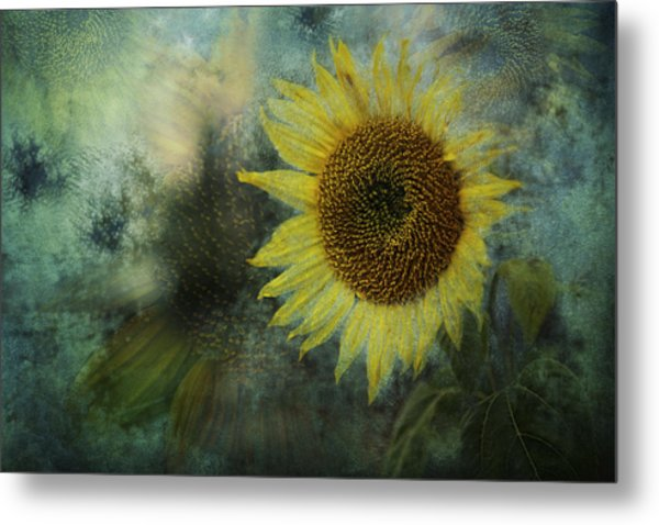 Sunflower Sea Metal Print