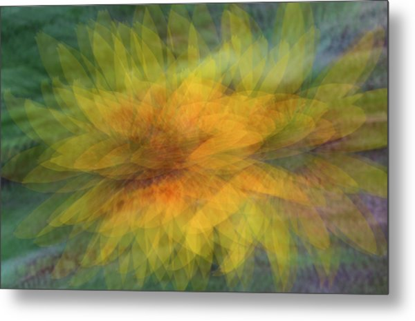 Metal Print featuring the photograph Sunflower Shimmy by Deborah Hughes