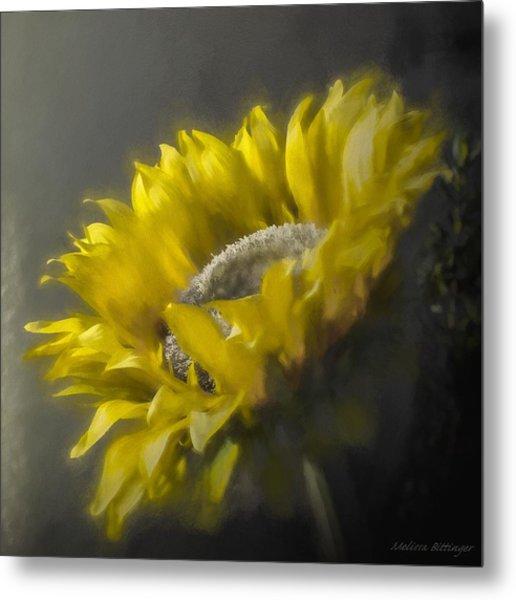 Sunflower Slumber Metal Print