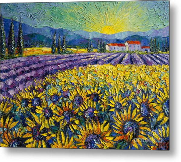 Sunflowers And Lavender Field - The Colors Of Provence Modern Impressionist Palette Knife Painting Metal Print