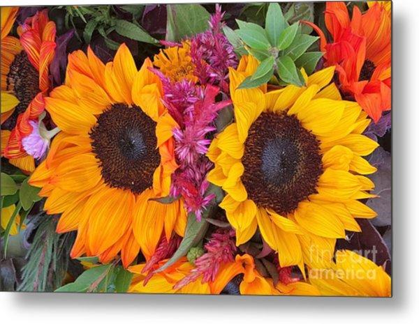 Sunflowers Eyes Metal Print