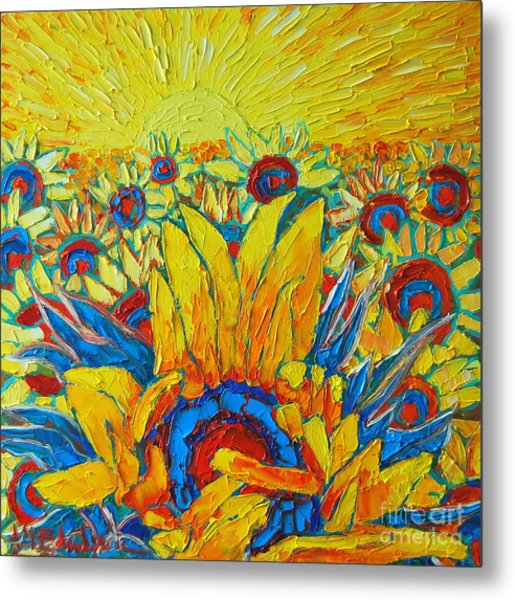 Sunflowers Field In Sunrise Light Metal Print