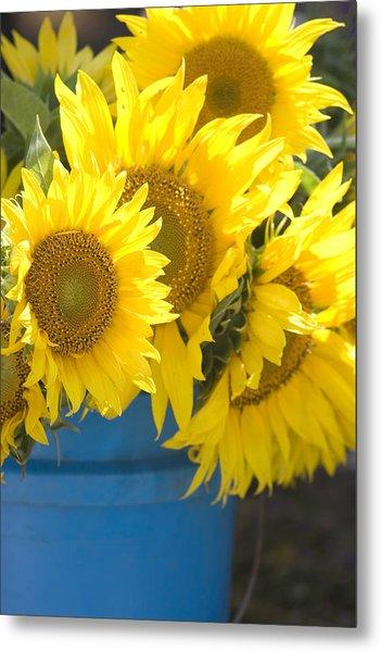Sunflowers For Sale Metal Print
