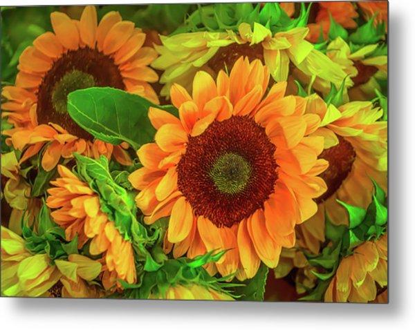 Sunflowers In The Garden Metal Print