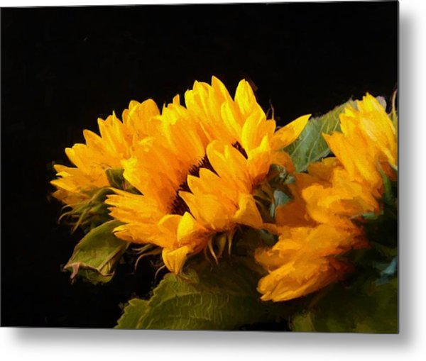 Sunflowers On A Black Background Metal Print
