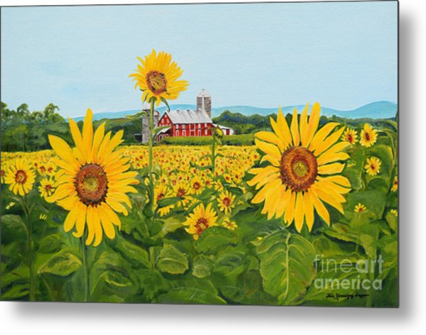 Sunflowers On Route 45 - Pennsylvania- Autumn Glow Metal Print