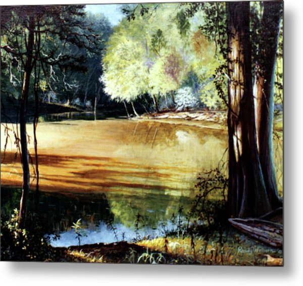 Sunlight On Village Creek Metal Print