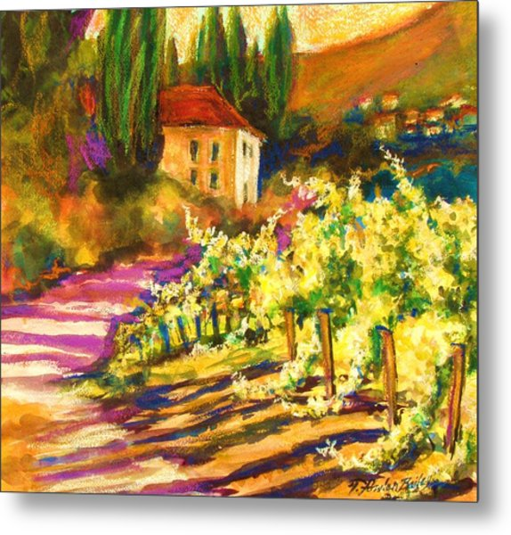 Sunlit Grapevines  Sold Metal Print by Therese Fowler-Bailey