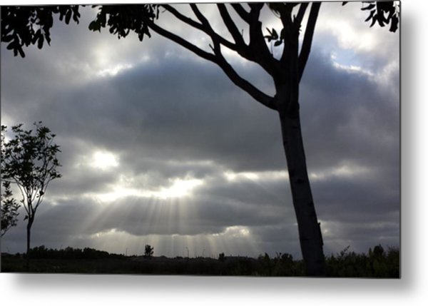 Sunlit Gray Clouds At Otay Ranch Metal Print