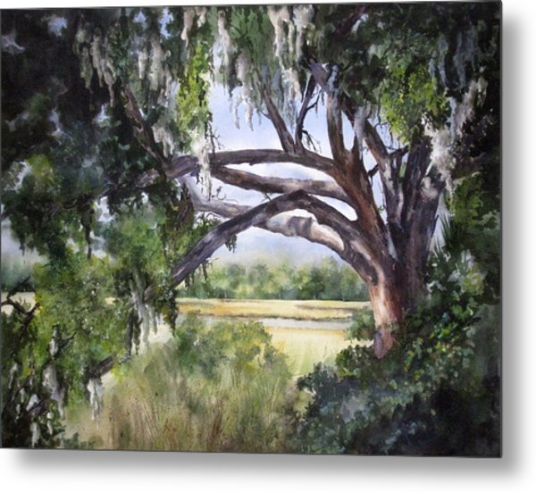 Sunlit Marsh Metal Print