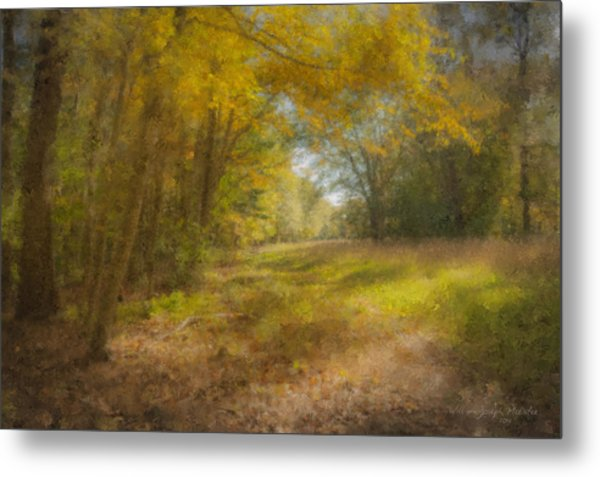 Sunlit Meadow In Borderland Metal Print