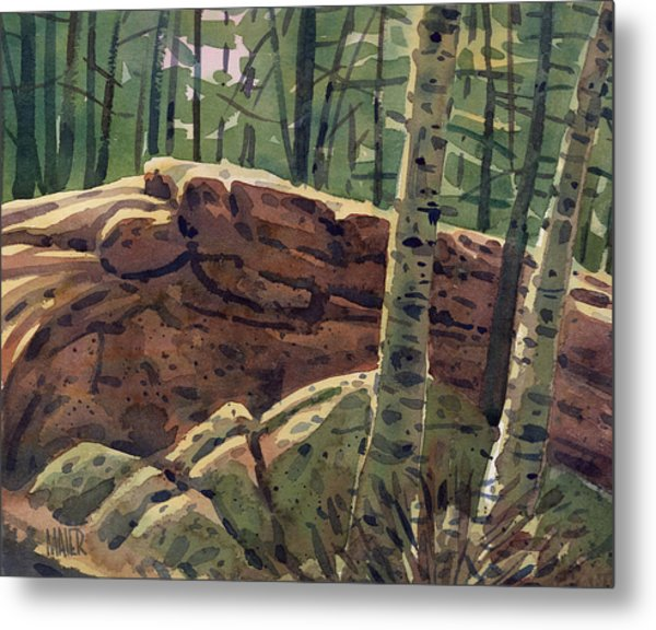 Sunlit Rocks Metal Print by Donald Maier