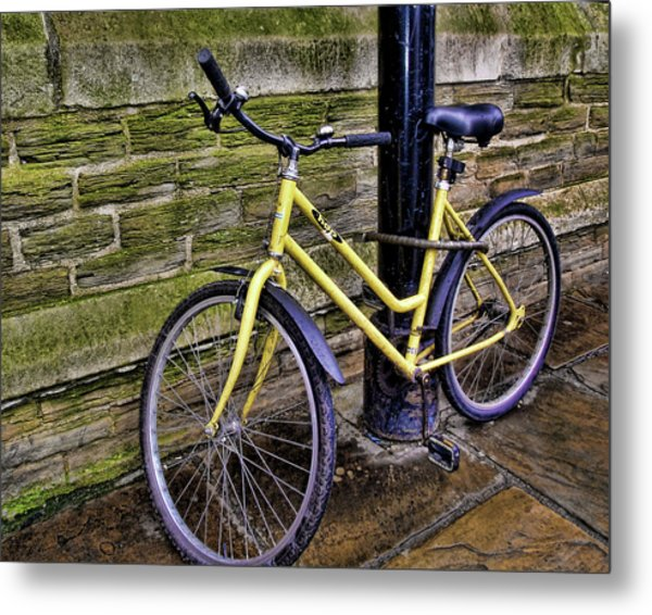 Sunny Cycle Metal Print by JAMART Photography