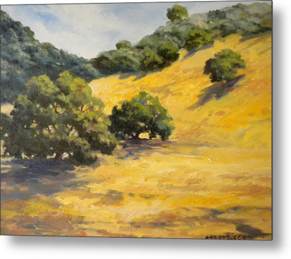 Sunny Hills Metal Print by Maralyn Miller