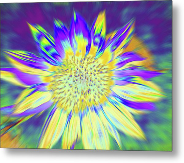 Sunpopped Metal Print