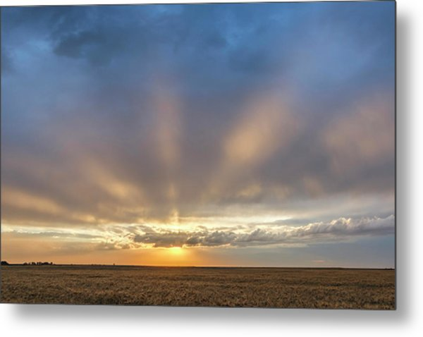 Sunrise And Wheat 03 Metal Print
