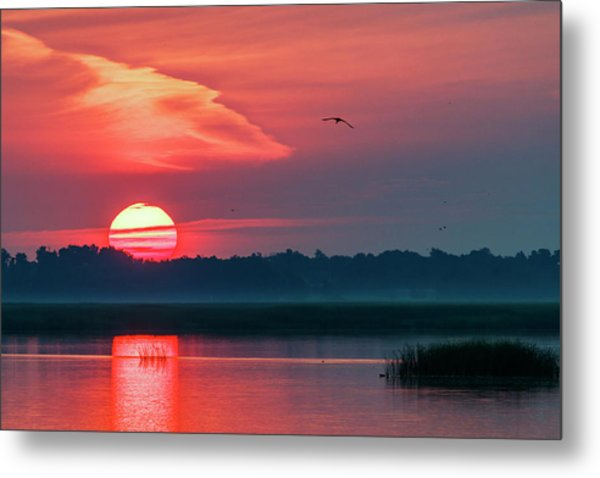 Metal Print featuring the photograph Sunrise At Cheyenne Bottoms 03 by Rob Graham