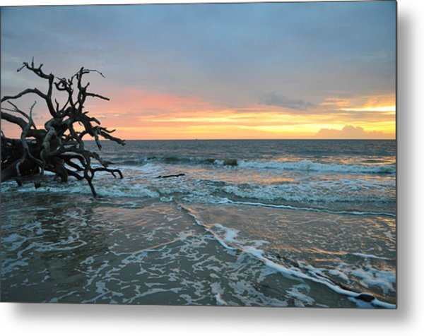 Sunrise At Driftwood Beach 1.3 Metal Print