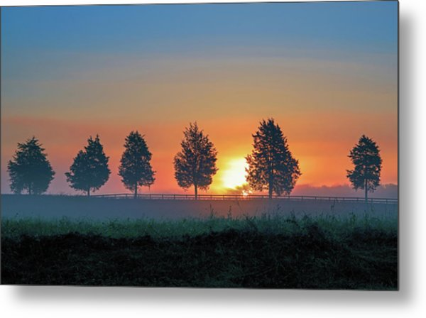 Metal Print featuring the photograph Sunrise Behind The Cedars by Lori Coleman