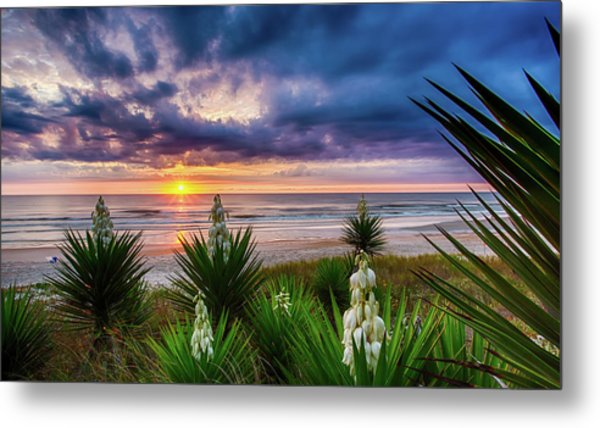 Sunrise Blooms Metal Print