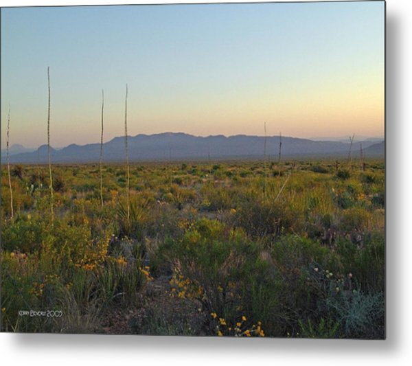 Sunrise Christmas Mountains Metal Print