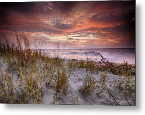 Sunrise In The Breeze Metal Print