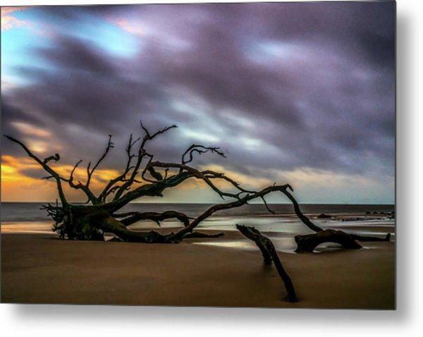 Metal Print featuring the photograph Sunrise On Driftwood Beach, Jekyll Island, Ga by Michael Sussman